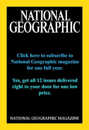 Buy a one year subscription to National Geographic Magazine.