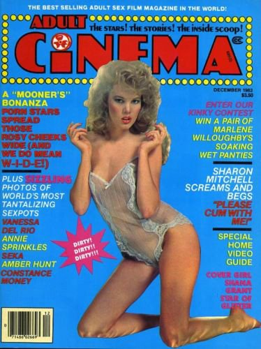 Understood adult cinema magazine