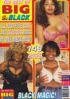Best of Big & Black # 2 magazine back issue