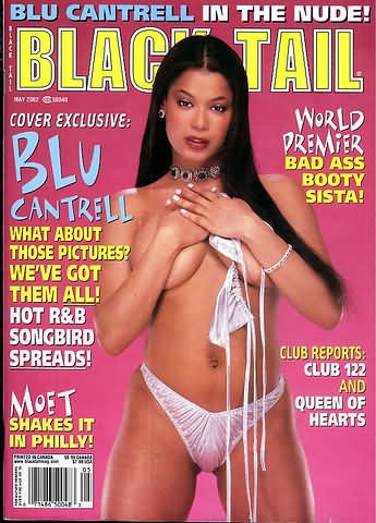 Blu Cantrell Sexy Nude Butt Rb Music Wall Print Poster Au