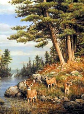 hautman brothers collection by buffalo, deer and pines photo deerandpines
