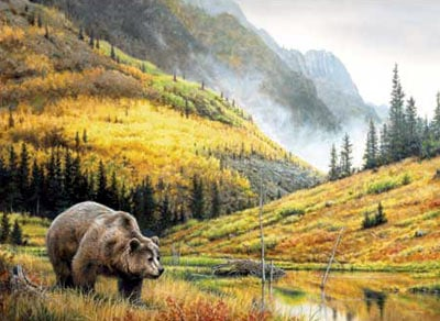 hautman brothers collection by buffalo, rocky mountain grizzly photo rockymountaingrizzly