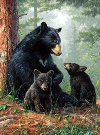 hautman brothers collection by buffalo, bear family photo bearfamily