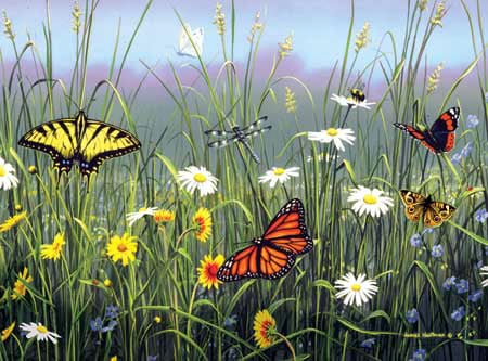 hautman brothers collection by buffalo, butterflies & flowers photo butterfliesflowers
