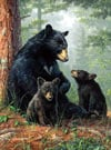 hautman brothers collection by buffalo, bear family photo Puzzle
