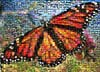 butterfly jigsaw puzzle by buffalo, photomosaic by robert silvers,