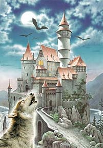 1000 pieces jigsaw puzzle by castorland, castle in the moonlight casleinthemoonlight