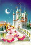 1000 pieces jigsaw puzzle by castorland, cinderella