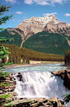 1000 pieces jigsaw puzzle by castorland, athabasca falls jasper national park