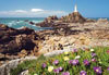 channel islands lighthouse, castorland 2000 pieces jigsaw puzzle