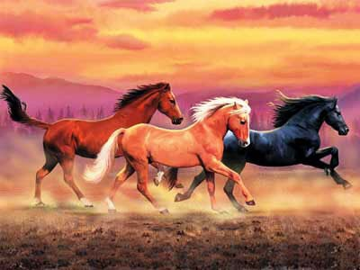 clementoni jigsaw puzzles, horses, 1000 pieces, horses