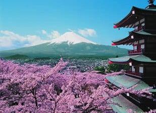 mount fuji mountfuji fuji-yama japan fujiama japon mountain jigsaw puzzle 1000 pieces 30764 clemento fujiyamajapanmountain
