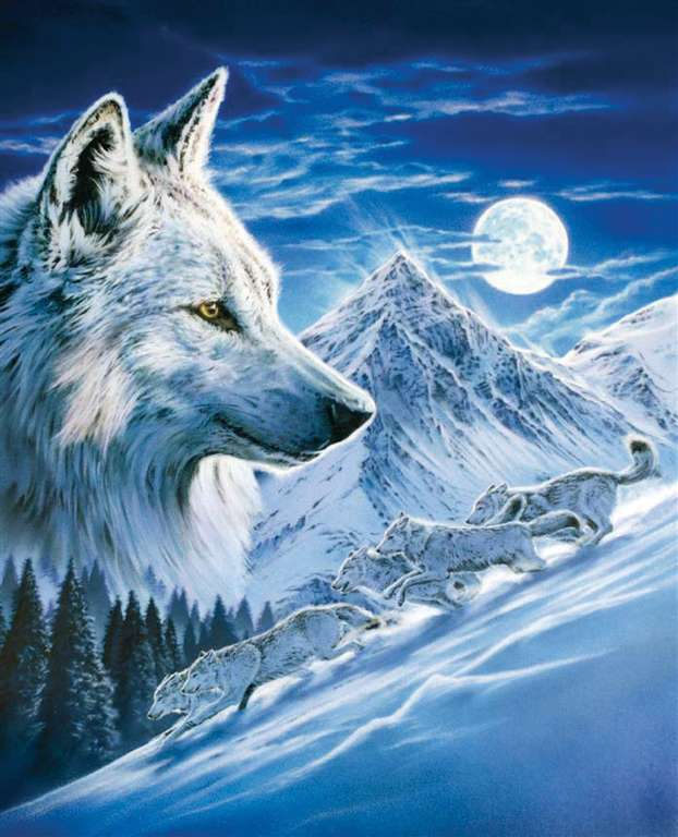 1000 Piece Jigsaw Puzzle Clementoni Puzzles The Wolf photographic fantasy fluorescent image wolf-fluorescent
