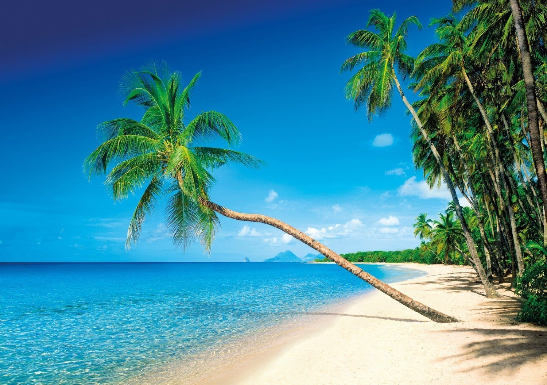 Caribbean Islands, Martinique puzzle clementoni 1500 pieces # 31669 caribbean-islands-martinique