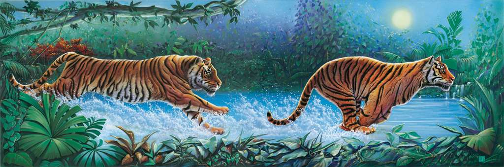 Clementoni JigsawPuzzle 1000 pieces Tigers beautiful colors panoramic 39028 tigers-clementoni