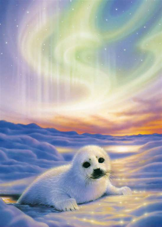 art of kirk reinert seal cub under aurora borealis clementoni 1000 piece jigsaw puzzle high color co seal-cub