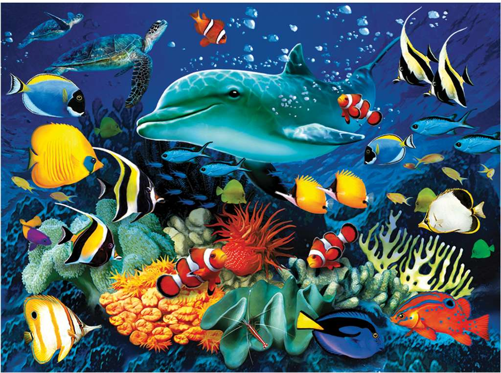 clementoni jigsaw puzzle, 1000 pieces, painting of a dolphin reef by howard robinson clementoni dolphin-reef
