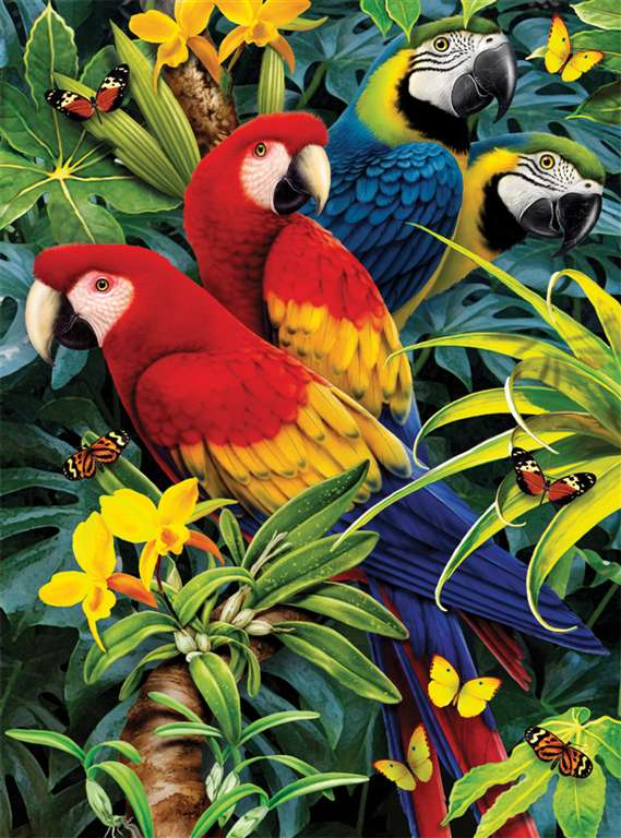 clementoni jigsaw puzzle, 1000 pieces, paintin of a majestic macaws 3D by howard robinson clemen majestic-macaws