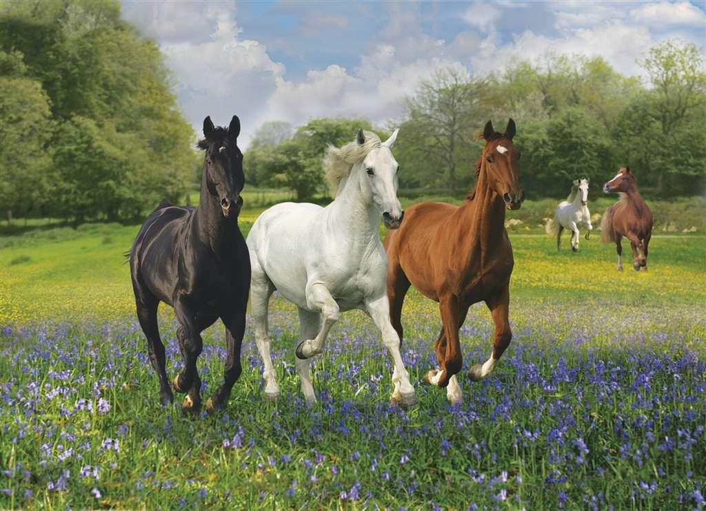 1000 Piece Jigsaw Puzzle ClementoniPuzzles Horses photographic fantasy image tropical horses-clementoni