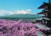mount fuji mountfuji fuji-yama japan fujiama japon mountain jigsaw puzzle 1000 pieces 30764 clemento