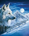 1000 Piece Jigsaw Puzzle Clementoni Puzzles The Wolf photographic fantasy fluorescent image