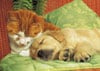 jigsaw puzzle by clementoni, cat and dog sleeping together, cute 1000pieces jigsawpuzzle