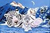 jigsaw puzzle by clementoni 2000 pieces, schim artist, white tiger puzzle