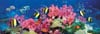 clementoni jigsaw puzzle, 1000 pieces, painting of a barrier reef photograph clementoni