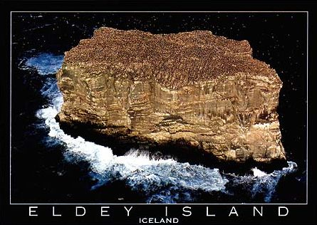 Eldey Island Iceland photographed by Yann Arthus Bertrand UNESCO Biosphere Series Educa 1000 made in eldey-island-iceland