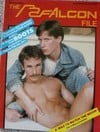 Falcon File # 13 magazine back issue