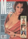 Fling Special # 28, 1993 - Mega Mams magazine back issue cover image