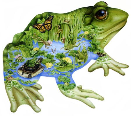 frog shaped painting by janet skiles, fx schmidt jigsaw puzzles princeofthepond