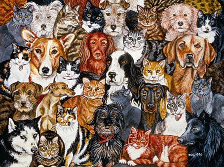 the gangs all here 1000 jigsaw piece puzzle by fx schmidt  abunch of dogs and cats in a beautiful co thegangsallhere