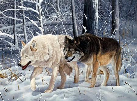 wolftrek