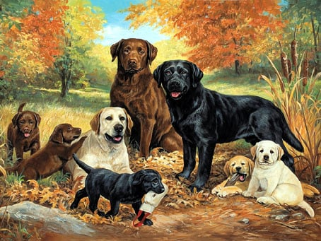 lindapicken labfamily painting jigsaw puzzle by fxschmidt beautiful labrador family painting labfamily