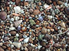 seagems,fx schmid ultra challenge jigsaw puzzle of sea gems all mixed together 1000 pieces