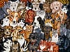 the gangs all here 1000 jigsaw piece puzzle by fx schmidt  abunch of dogs and cats in a beautiful co Puzzle