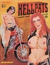 HellCats Vol. 1 # 1 magazine back issue