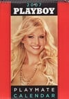 Playboy Playmate Wall Calendar 2007 magazine back issue