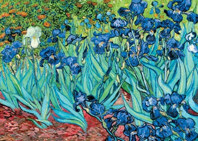 ravensburger 1000 piece puzzle vincent van goghs paiting irises artwork irises-painting-puzzle-van-gogh