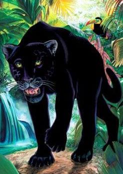 blackpantherflokati
