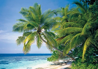 maldives nation puzzle ravensburger 26 atolls 1192 islands 1000 pieces maldives-ravensburger-puzzle-1500pieces