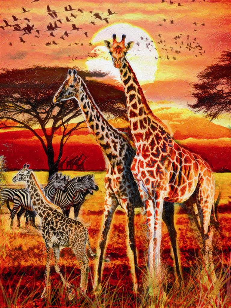giraffe family photograph in african sunset jogsaw puzzles jogsawpuzzles jigsawpuzzle giraffe puzz african-sunset