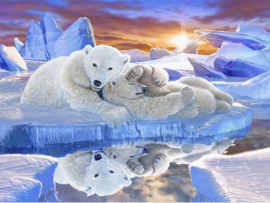 Ravensburger Polar Bears Jigsaw Puzzle titled Little Dreamer # 163014 1500 Piece Puzzle littledreamer