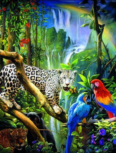 In the Rainforest 1500 Piece Tropical Jigsaw Puzzle by Ravensburger Games Germany intherainforest
