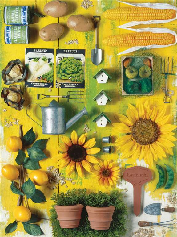 Jigsaw Puzzle 1500 pieces my garden by Andrea Tilk  manufactured by Ravensburger # 163953 my-garden