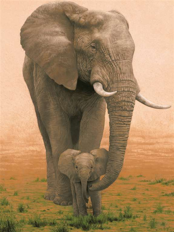 Ravesburger JigsawPuzzle 1500 pieces elephant mother protecting her baby 163960 elephant-mother-protecting-baby