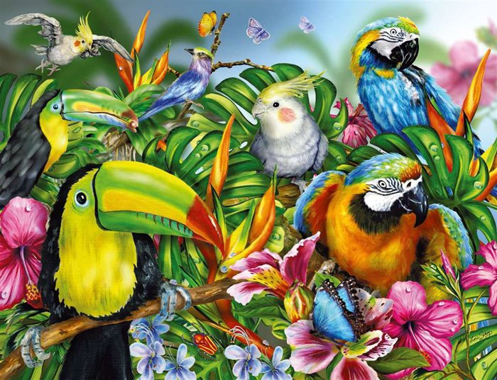 Tropical Birds painted by artist Lori Schory ravensburger 2000 piece jigsaw puzzel # 166817 tropical-birds