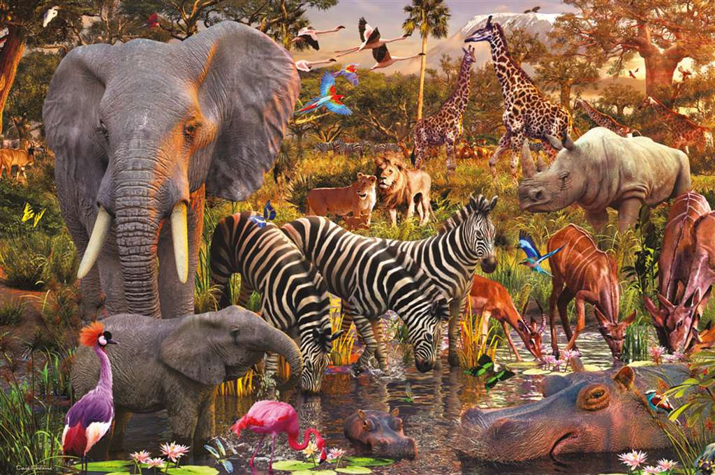 african animal world david penfound jigsaw puzzle ravensburger 3000 pieces african-animal-world