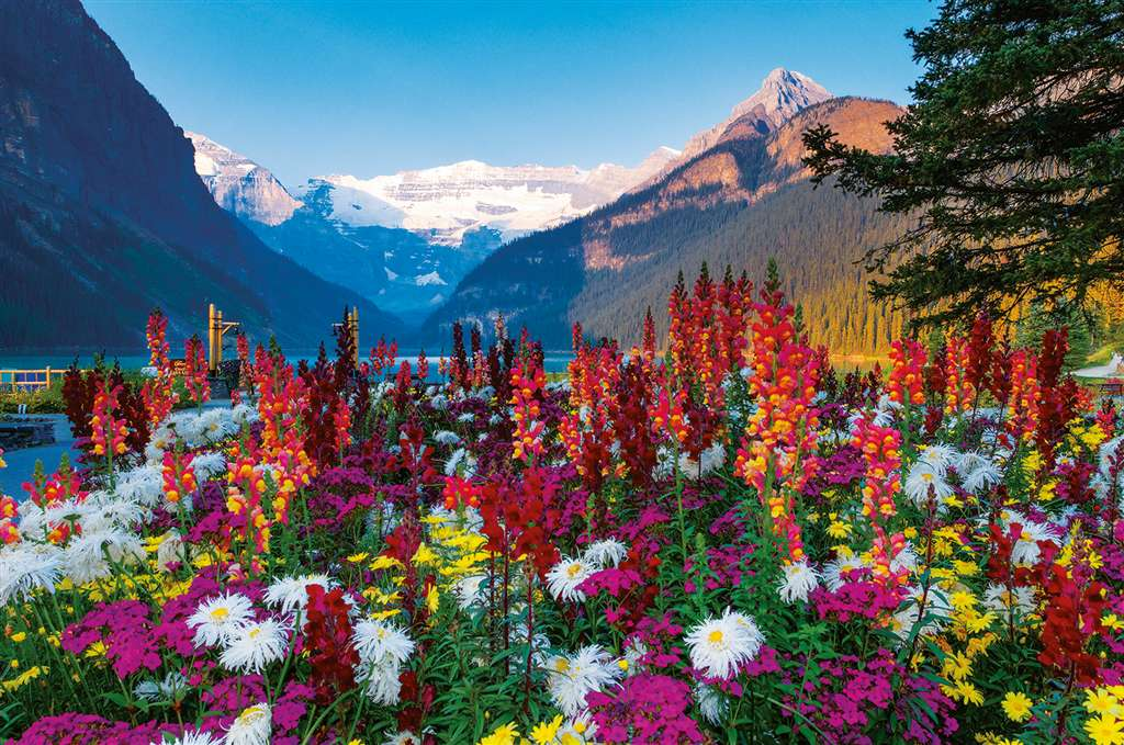 Flowery Mountains Ravensburger 3000 Piece Jigsaw planet Puzzle michael wheatley photo flowery-mountains